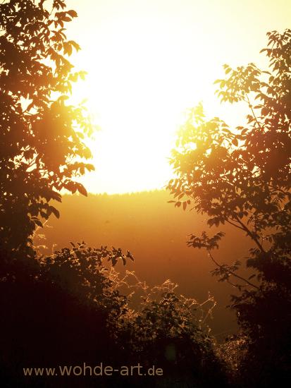 Sonnenaufgang Feld